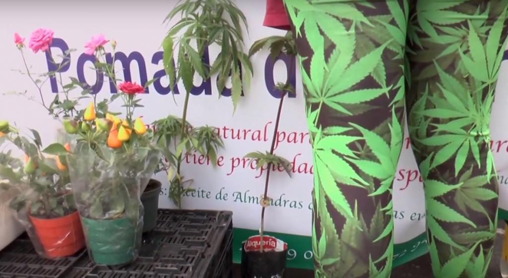 Expocannabis Usaquén